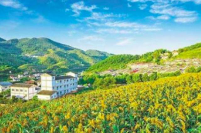连江乡村游助推乡村振兴 已形成5个旅游特色村