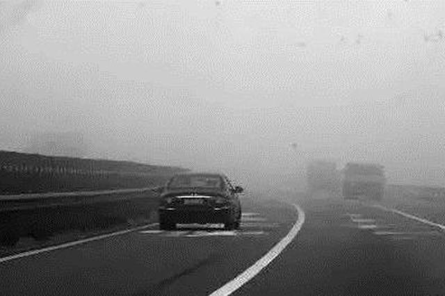 厦门明后天都将雨雾迷蒙 全市普降小到中雨能见度较差