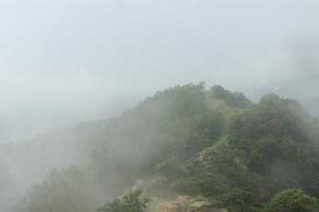 厦门明后天都将雨雾迷蒙 全市普降雨能见度较差