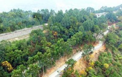 福山生态公园春节前开放5公里步道、450亩生态园