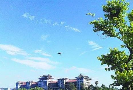 """厦门去年空气质量位居全国第四 """"厦门蓝""""美如画"""