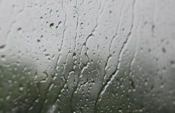 今明两天厦门空气湿度攀高 全市阴雨气温不降反升