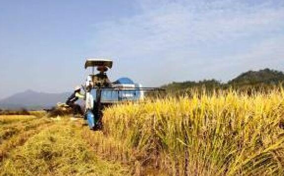 石狮出台管理规定 三类人员可申请新型职业农民证书