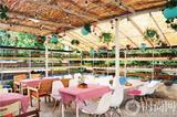 寻找城市里的无霾餐厅