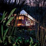 豪华露营蜜月之旅 一起去浪漫探险吧