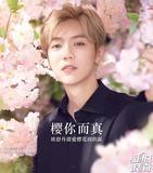 鹿晗陈伟霆也被拿下 美妆品牌把男明星抢光了
