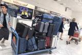 11套造型12天行程13箱行李 范冰冰戛纳真是拼了