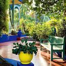 在棕榈和雪松间漫步 这些酒店与花园为邻