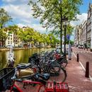 阿姆斯特丹也发起了禁止动物皮草交易的立法提案