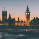 英国掀起皮草大论战 皮草支持者对决皮草反对者