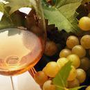春暖花开 许你一杯芳香型白葡萄酒