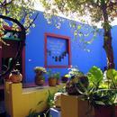 Google策划了一个线上展览 回顾画家弗里达的人生