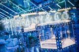 Tiffany & Co.蒂芙尼Paper Flowers花韵系列发布