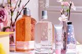 FUNbox | 双十一之樱花香氛盛宴
