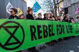 伦敦时装周贝嫂大秀出乌龙 遭环保组织拦路抗议