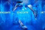 颠覆现实 | 与STACCATO共谱现代幻想曲