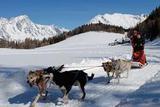 冬季蜜月 就要去能滑雪的冰雪王国