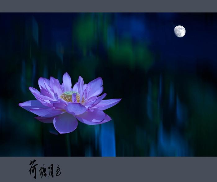 莲花与佛教的关系十分密切,也可以说莲花就是佛的象征.莲花代表圣