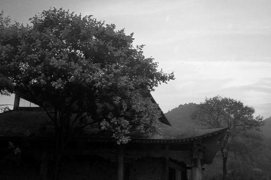 禅门三日,红尘千里。(图片来源:《禅》刊)