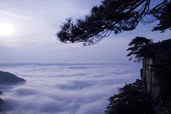 苏东坡禅诗:庐山烟雨