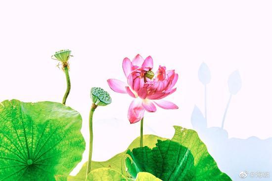 佛典故事:人生是什么