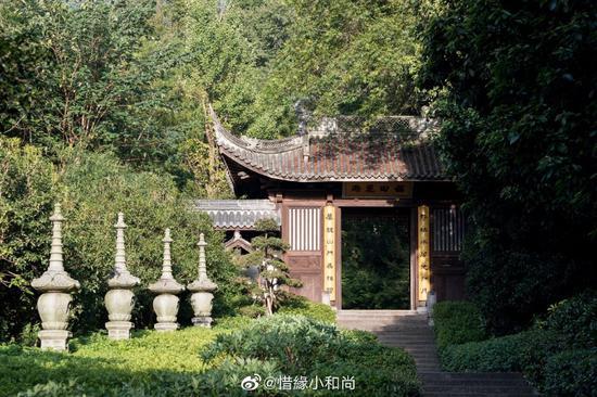 中国很多名茶由是创始于寺庙。(摄影:@惜缘小和尚)