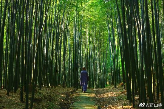 """""""禅茶一味""""是大乘佛法色空不二、理事圆融的无住涅槃境界的生活化诠释。(图片来源:药山寺)"""