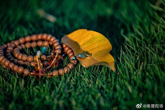 对于佛教徒来说,佩戴念珠是为摄心禅定念佛。(图片来源:南普陀寺)