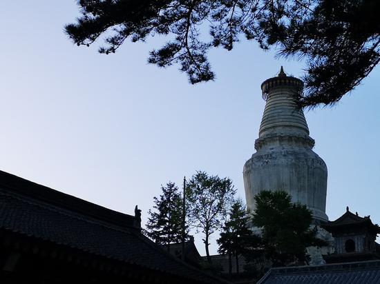佛陀曾针对每一个从他学法的人,设计了各种让心专注的方法