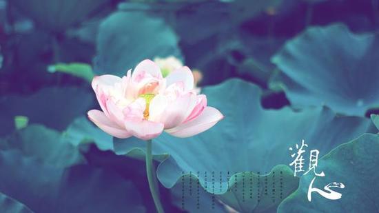 佛教中对心的描述有五种