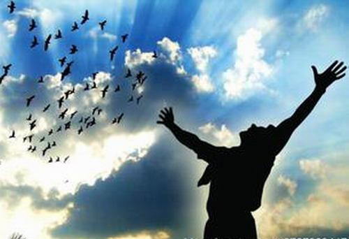 让心属于你自己才是真正的自由