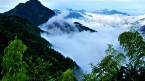 满目青山是禅,茫茫大地是禅;浩浩长江是禅,潺潺流水是禅;青青翠竹是禅,郁郁黄花是禅。