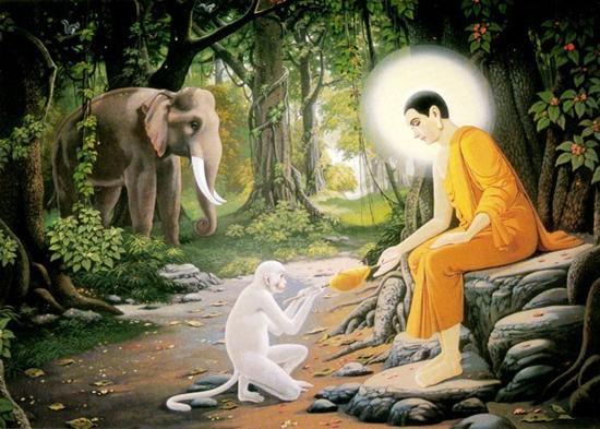 佛教的十种供养是什么?第一就是香