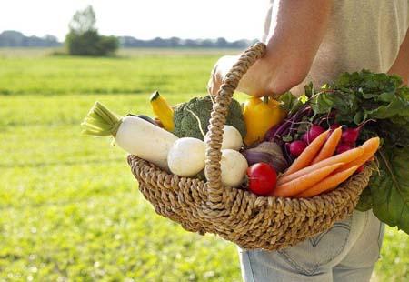 生活中有哪些素食可以改善肤色呢?