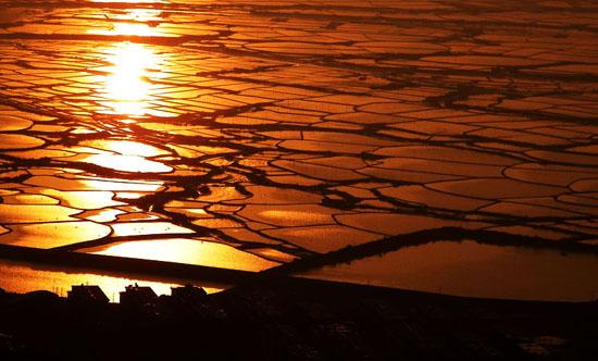 佛理故事:水中的黄金