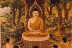 大安法师:佛陀的本怀