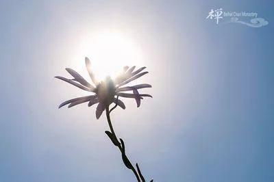 《灵峰蕅益大师宗论》卷第二之二 示绪竺