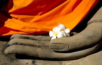 本焕长老:慈善是僧人修持的方便法门