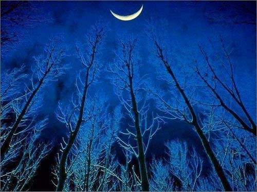 禅诗赏识:月在浮云浅处明