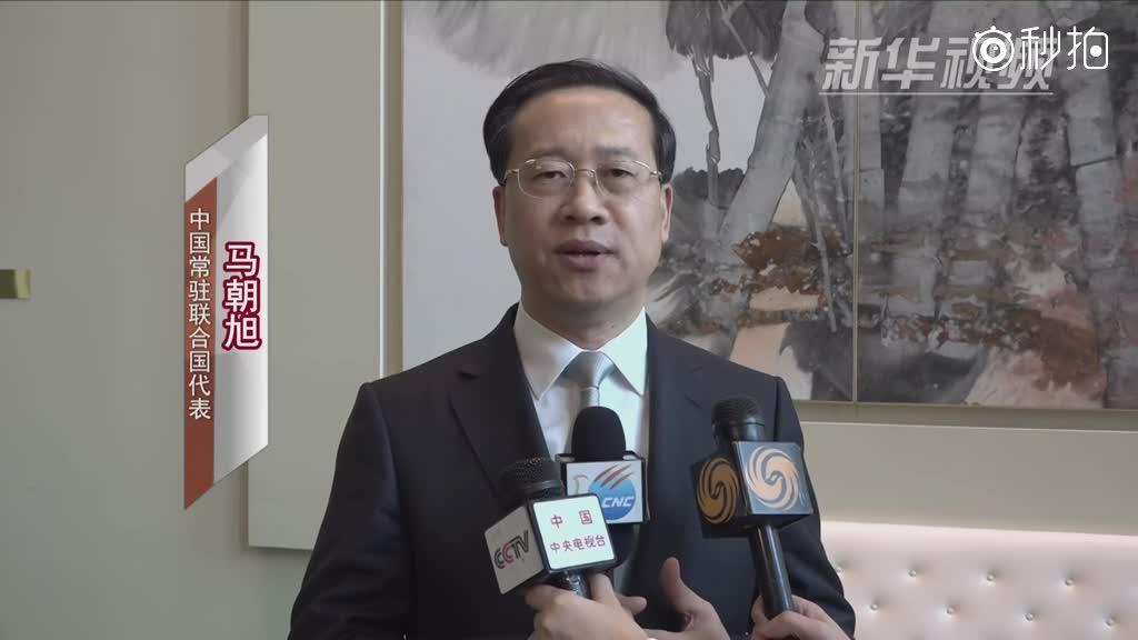 中国代表呼吁有关各方在叙利亚问题上保持克制