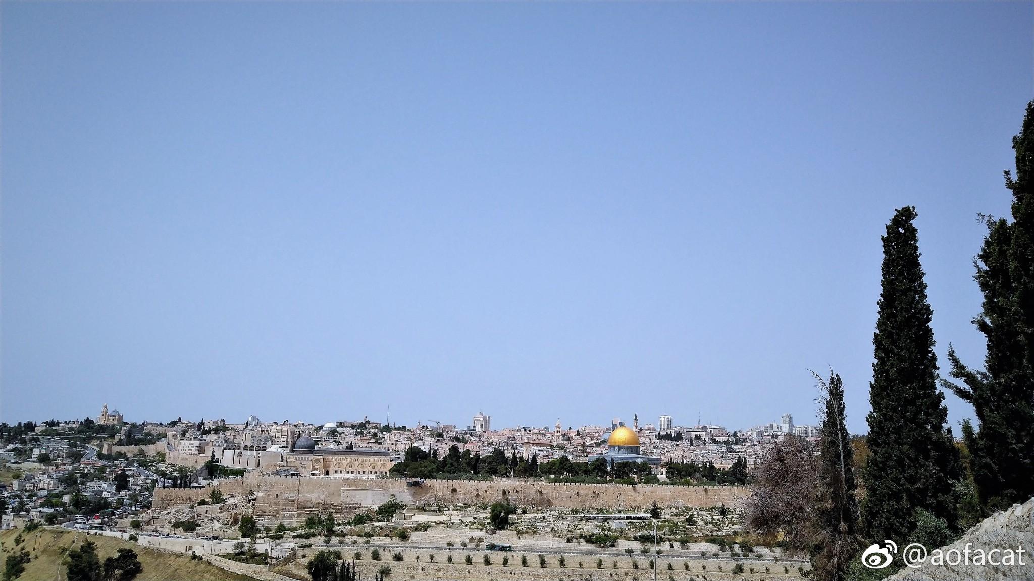 耶路撒冷的数字:苦路十四站。