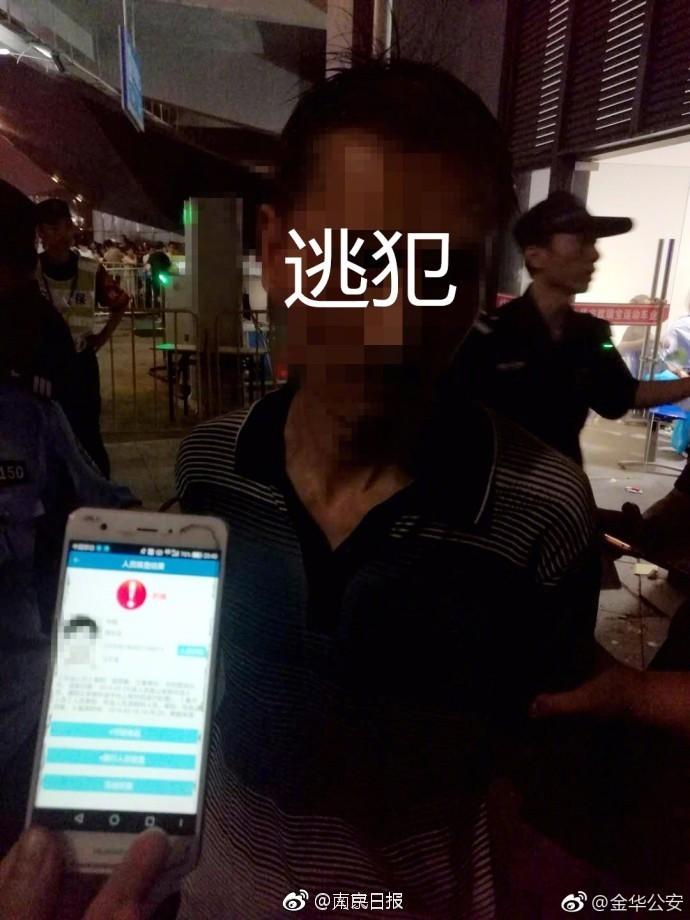 【大丰收官网app】艾诚对话张泉灵:想跳出玻璃缸的鱼