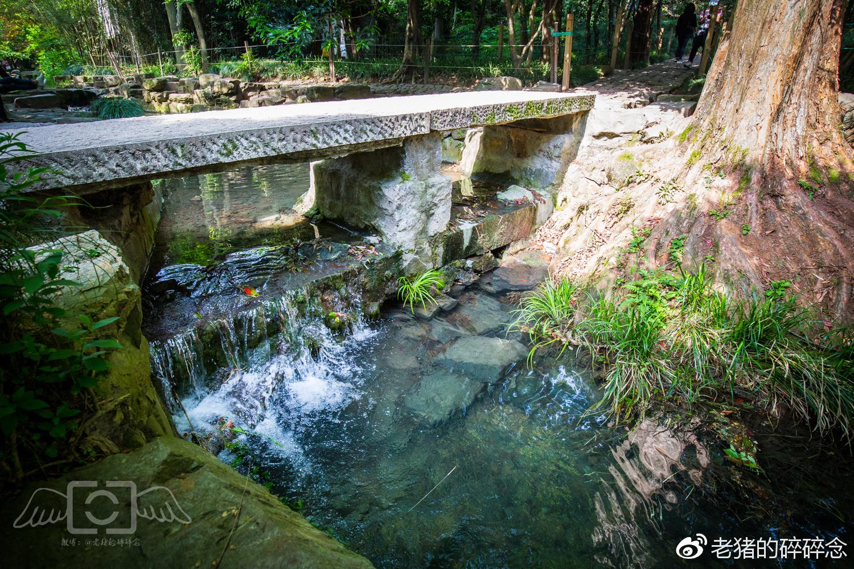 云深藏古寺,探访杭州九溪十八涧古刹理安寺