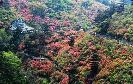 《牧童遥指的杏花村在梁山?湖北人第一个表示不服!》