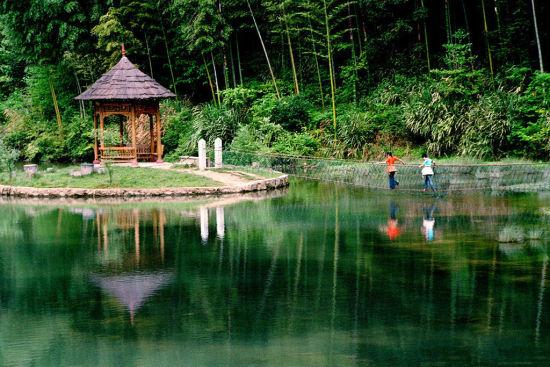 去年明升省森林旅游接待人数突破1.64亿人次
