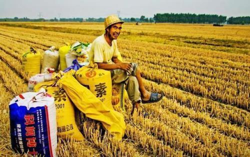 农民种地补贴