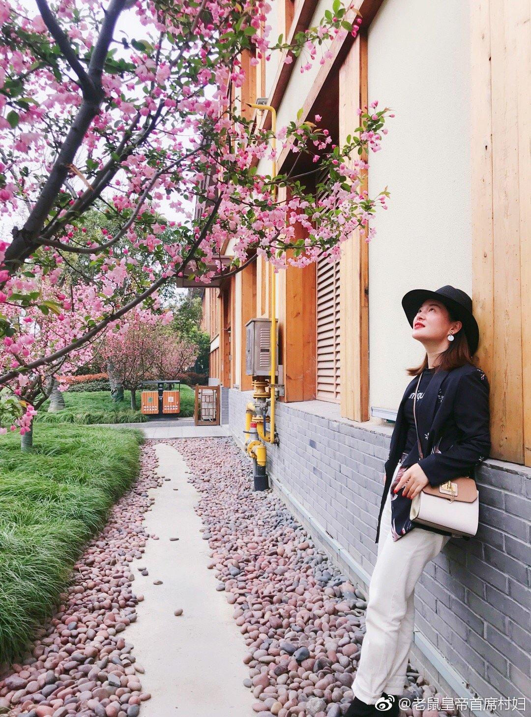 烟花三月去扬州,绿暗红绡,谁家庭院樱开早?一片寒香入画堂