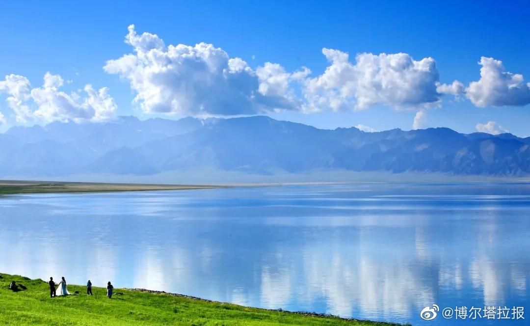 赛里木湖迎来盛花期,随手一拍即大片……