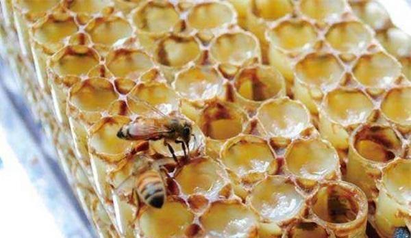 蜂皇浆能增加卵巢功能吗?蜂皇浆对卵巢有好处吗?