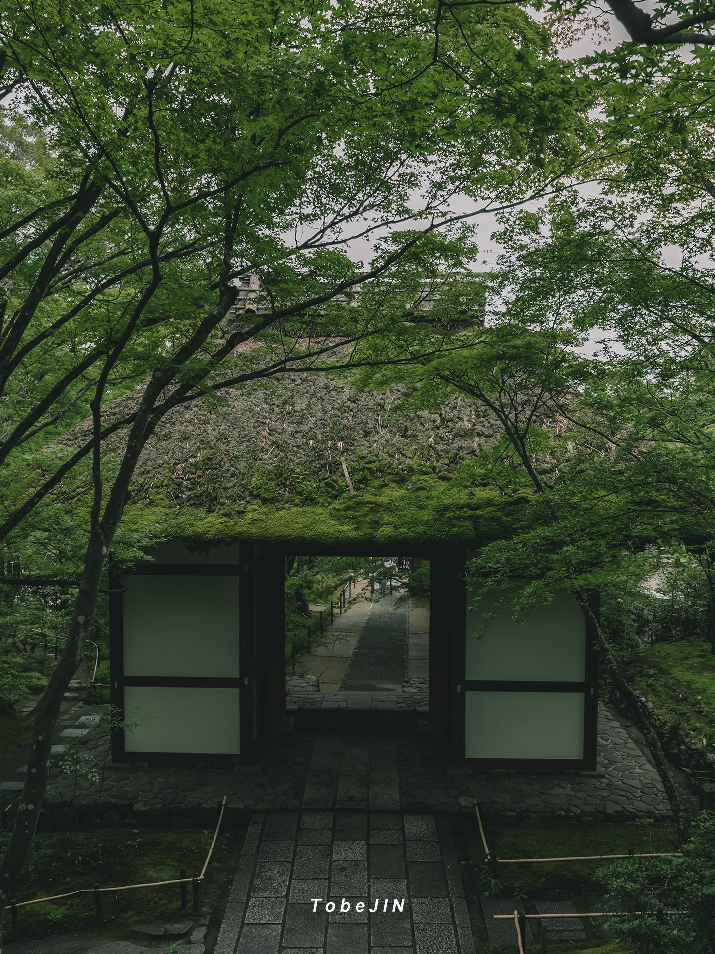 京都的常寂光寺,一座简朴的寺院